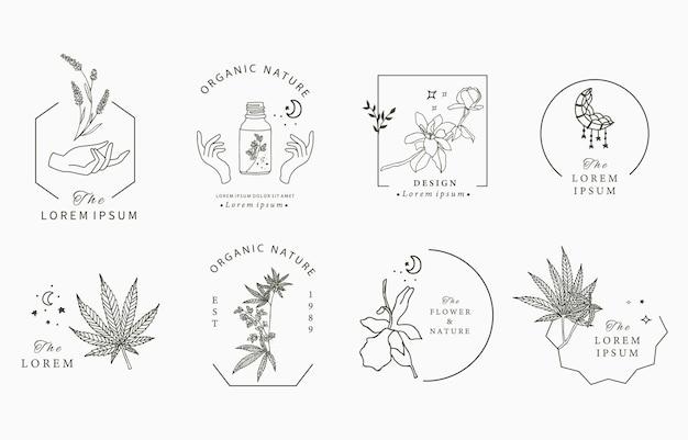 Collezione di oggetti linea con mano, cannabis, lavanda, magnolia, luna