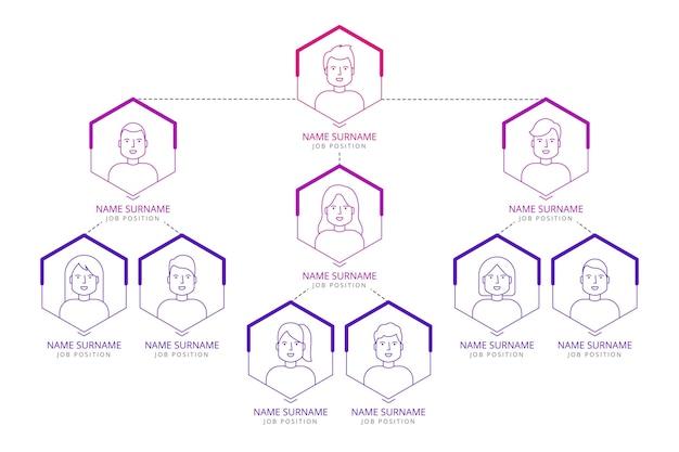 Infografica organigramma piatto lineare