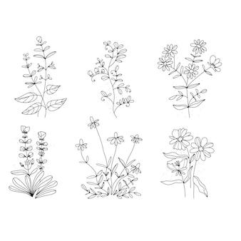 Fiori lineari. fiori di campo in fila. stile vintage . sfondo bianco poster art nouveau.