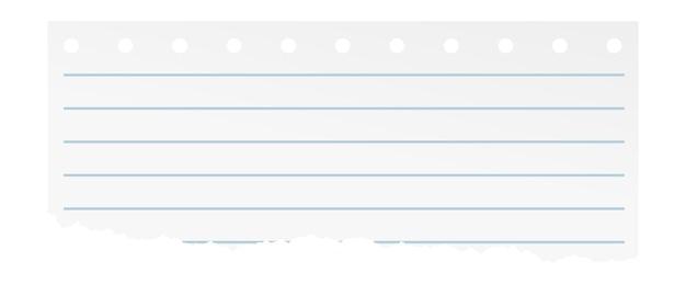 Carta a righe strappata dal taccuino. foglio bianco isolato su sfondo bianco.