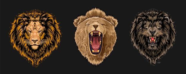 Set di facce di leone