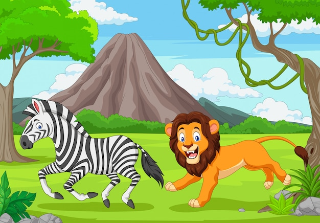 Il leone sta inseguendo una zebra in una savana africana