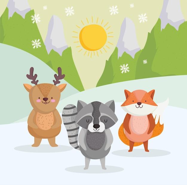 Piccoli animali inverno