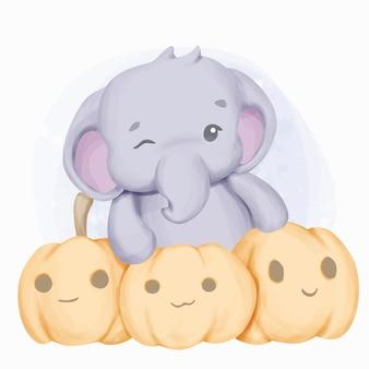 Piccolo elefante e tre facce di zucche