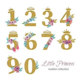 Collezione di numeri piccola principessa