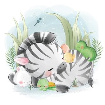 La piccola zebra che dorme con i suoi amici