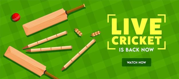 Live cricket è tornato ora testo con vista dall'alto di ceppi di mazza, palla e stoppino su sfondo fantasia scozzese verde. intestazione o banner.