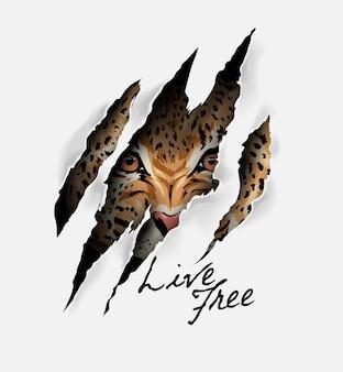 Live slogan gratuito con faccia di leopardo nell'illustrazione del segno di artiglio