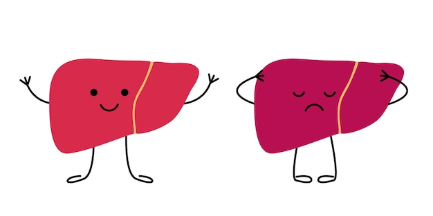 Fegato felice sano e triste che soffre di personaggi malati malattia malsana del dolore al fegato triste