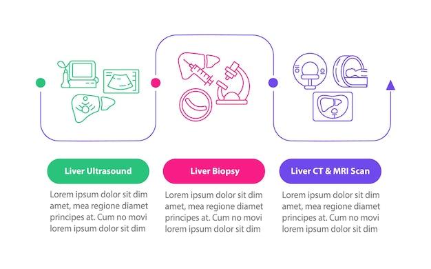 Modello di infografica vettoriale test del fegato. biopsia d'organo, elementi di design della presentazione della scansione tc. visualizzazione dei dati con 3 passaggi. grafico della sequenza temporale del processo. layout del flusso di lavoro con icone lineari