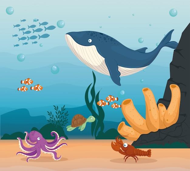 Aragosta e animali marini nell'oceano, abitanti del mondo marino, simpatiche creature sottomarine, fauna sottomarina