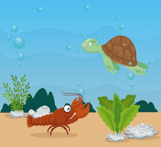 Aragosta con tartaruga e animali marini nell'oceano, abitanti del mondo marino, simpatiche creature sottomarine, fauna sottomarina