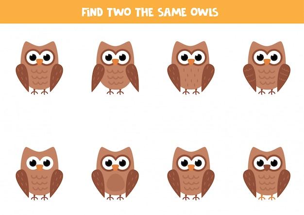 Puzzle logico per bambini. trova due gufi identici.