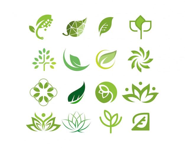 Logo collezione foglia e albero vettoriale