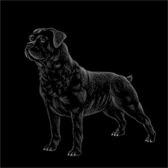 Il cane logo