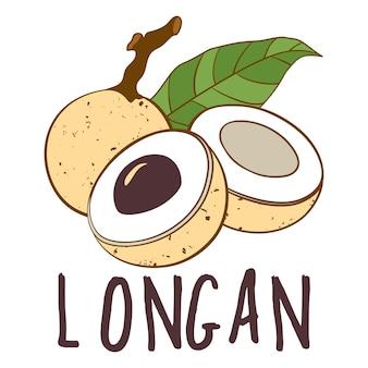 Logo del frutto longan isolato su priorità bassa bianca
