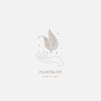 Modello di logo - mano che tiene le foglie. stile lineare. eco, organico, cura della natura, concetto ecc
