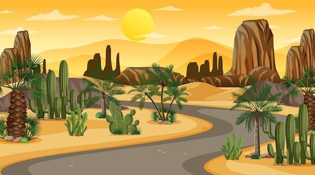 Lunga strada attraverso il paesaggio della foresta del deserto alla scena del tramonto