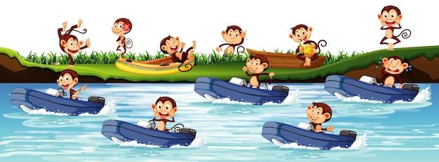 Molte scimmie in sella a una barca a motore nel fiume
