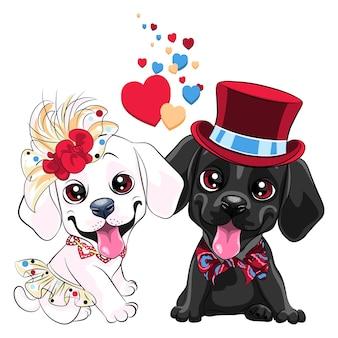 Amanti simpatici cani labrador retriever