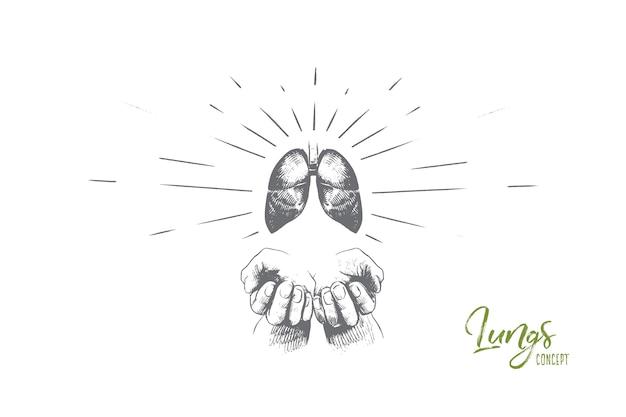 Illustrazione di concetto di polmoni