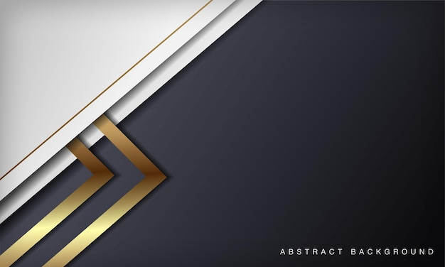 Sfondo bianco e nero astratto di lusso con decorazioni a forma di linee dorate