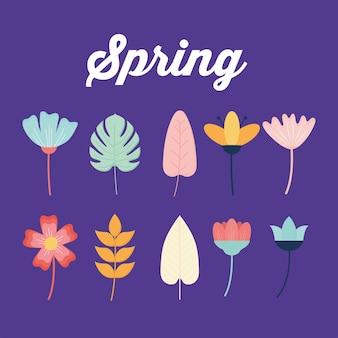 Testi di primavera e set di fiori su uno sfondo viola