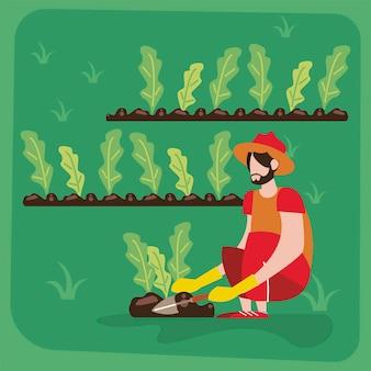 Coltivatore maschio che pianta
