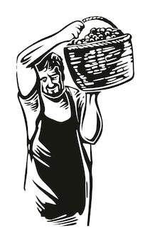 L'uomo raccoglie l'uva in vigna illustrazione di incisione vettoriale vintage nero