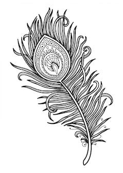 Mandala per colorare disegno di piume di pavone.