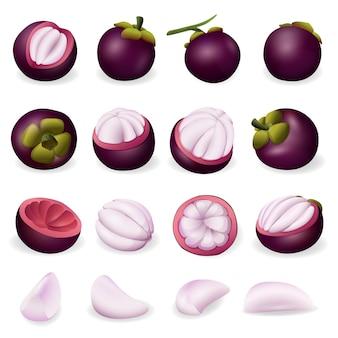Set di icone di mangostano