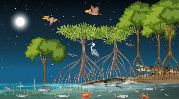 Scena del paesaggio della foresta di mangrovie di notte con molti animali diversi