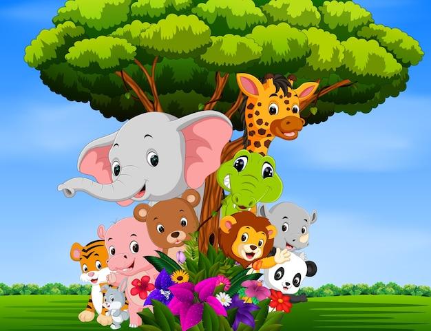 Molti animali si nascondono dietro un albero