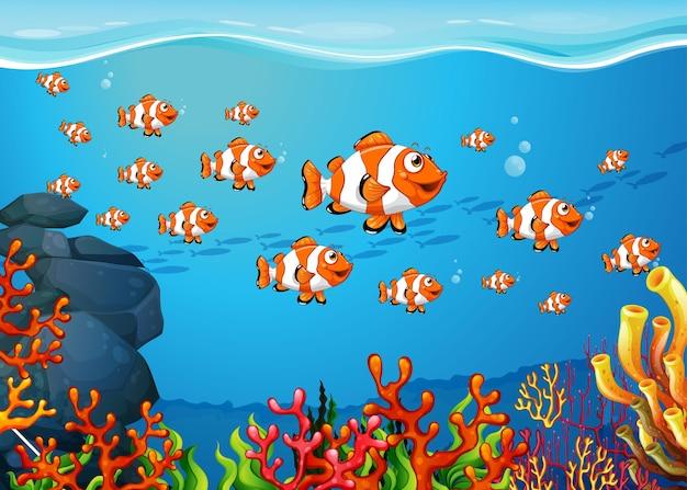 Molti personaggi dei cartoni animati di pesci esotici sullo sfondo subacqueo