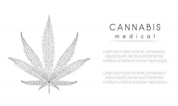 Foglia di marijuana
