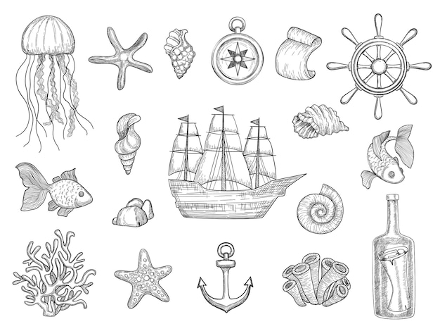 Simboli marini. raccolta nautica della barca a vela di simboli dell'oceano delle barche delle conchiglie della nave del pesce