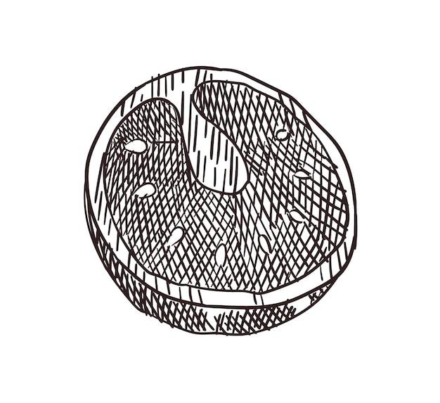 Cornice vista dall'alto di carne. disegno inciso. pezzi di carne preparati al modello di progettazione del barbecue. illustrazione vettoriale di schizzo disegnato a mano dell'annata. nutrizione corretta
