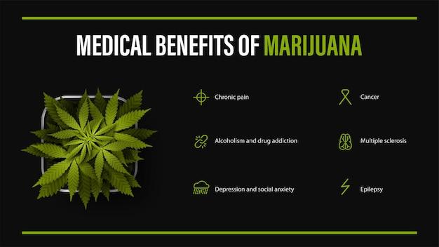 Benefici medici della marijuana, poster nero con infografica e cespuglio di cannabis in un vaso. benefici usi della marijuana medica