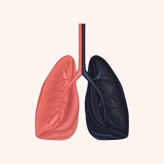 Grafico di educazione medica anatomia polmonare