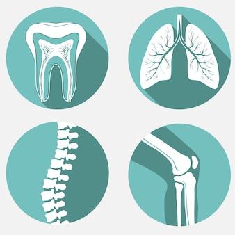 Set medico, clinica diagnostica, elementi di design sanitario.