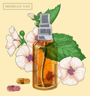 Pianta medicinale marshmallow e spruzzatore di vetro marrone, illustrazione botanica disegnata a mano in uno stile moderno alla moda