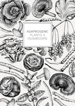 Illustrazione disegnata a mano di piante medicinali e funghi sfondo di erbe adattogene