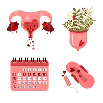 Coppetta mestruale e stile disegnato a mano dell'utero e del calendario