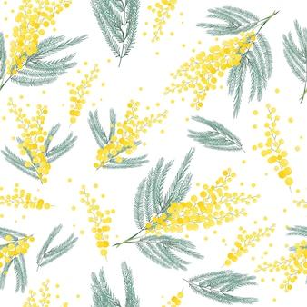 Sfondo di fiori di mimosa.