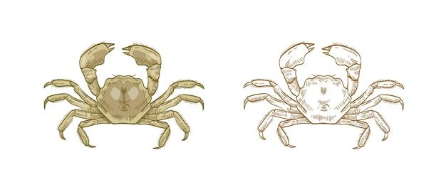 Set di illustrazioni di granchio guanto. animale sottomarino disegnato a mano colorato e monocromatico su bianco