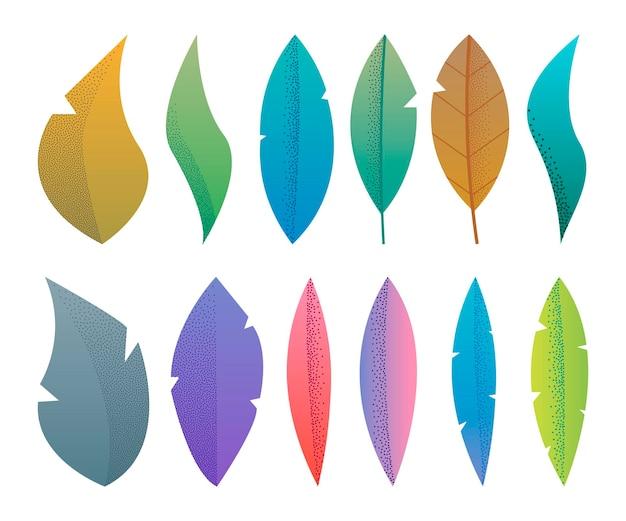 La fantasia piana moderna lascia l'erbario, le piante, l'insieme minimalistic degli alberi, disegno strutturato dell'illustrazione di vettore su fondo bianco
