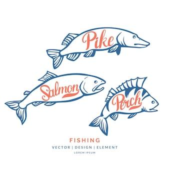 Moderna parola scritta disegnata a mano perch salmone e luccio pennello per calligrafia e inchiostro
