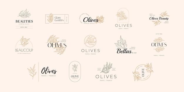 Olio d'oliva moderno e foglia di ulivo, design del logo del ramo