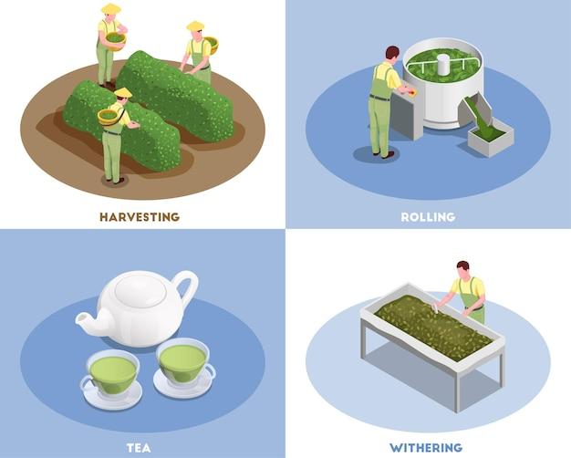 Illustrazione isometrica della composizione nella struttura moderna di produzione del tè