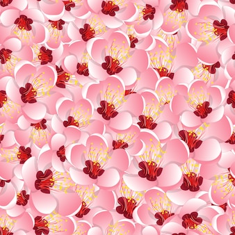 Fondo senza cuciture del fiore del fiore della pesca di momo